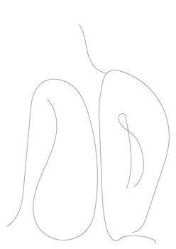 Ilustração Ruth