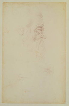 Reprodução do quadro Sketch of a male head and two legs