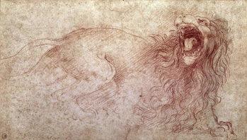 Fine Art Print Sketch of a roaring lion