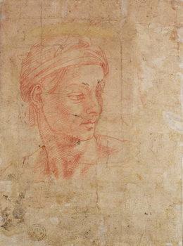Fine Art Print Study of a Head