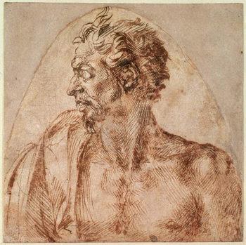 Fine Art Print Study of Head and Shoulders