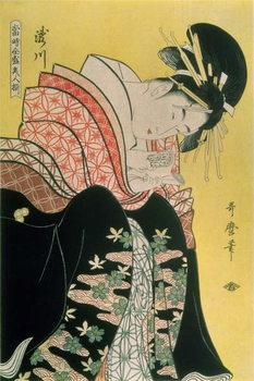 Reprodução do quadro Takigawa from the Tea-House, Ogi