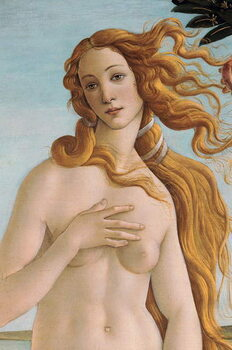 Taidejuliste The Birth of Venus (detail), c.1485