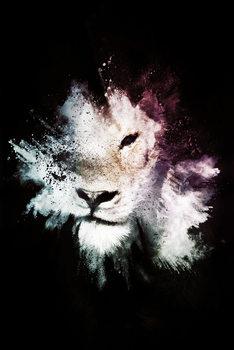 Arte Fotográfica The Lion