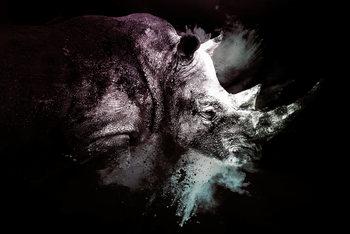 Arte Fotográfica The Rhino
