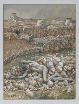 Reprodução do quadro The Son of the Vineyard