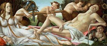 Reprodução do quadro Venus and Mars, c.1485