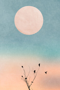 Illustration Waking Up Warm