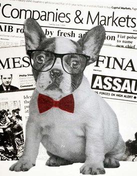 Reprodução do quadro Wall street dog, 2015,