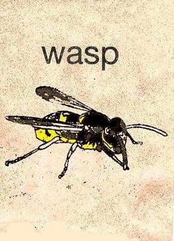 Fine Art Print 'Wasp' 2014