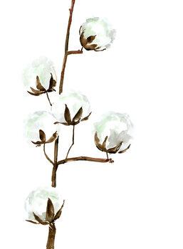 Kuva Watercolor cotton branches