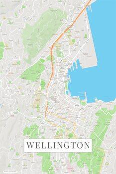 Map Wellington color