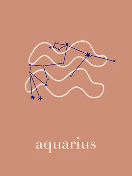 Illustration Zodiac - Aquarius - Terracotta