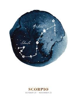Illustration Zodiac - Scorpio