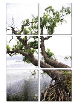 Arte moderna Praying Tree