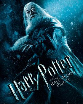 Impressão artística Harry Potter and the Half-Blood Prince - Albus Dumbledore Action