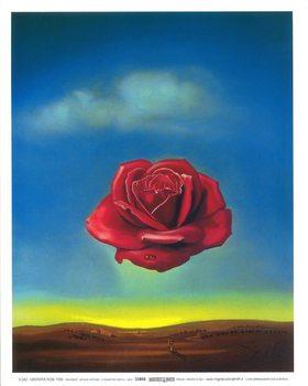 Impressão artística Meditative Rose, 1958