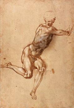 Reprodução do quadro A seated male nude twisting around, c.1505
