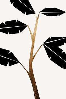 Ilustração Banana Tree