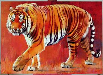 Reprodução do quadro Bengal Tiger
