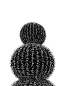 Ilustração BLACKCACTUS5