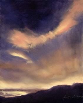 Reprodução do quadro Butterfly Clouds, 2002