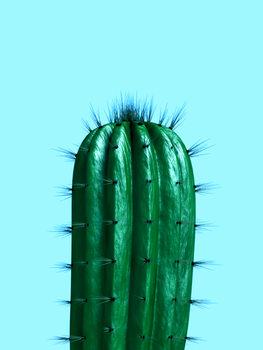 Ilustração cactus1