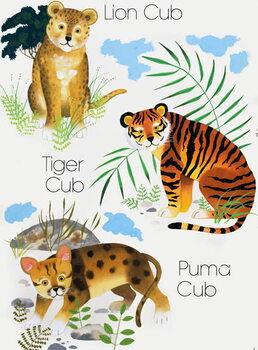 Reprodução do quadro Cubs of Big Cats