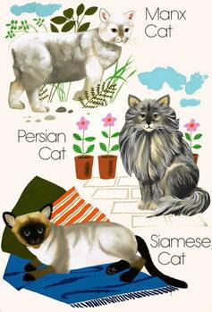 Reprodução do quadro Domestic cats