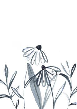 Ilustração Echinacea meadow
