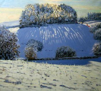 Reprodução do quadro Field of shadows, near Youlgrave, Derbyshire