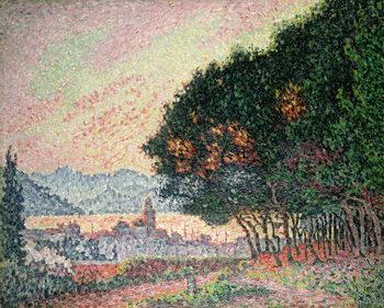 Reprodução do quadro Forest near St. Tropez, 1902