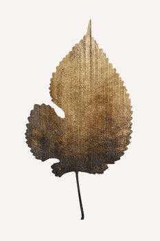 Ilustração Golden Leaf