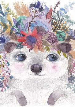 Ilustração Hedgehog