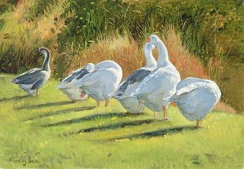 Reprodução do quadro Moat Edge, Bedfield