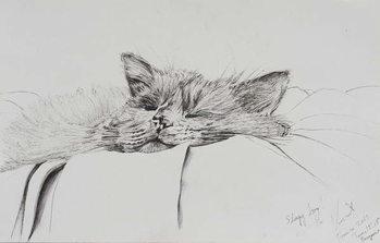 Reprodução do quadro Monty sleepy boy, 2013,
