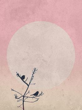 Ilustração moonbird8