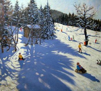 Reprodução do quadro Mountain hut, Morzine