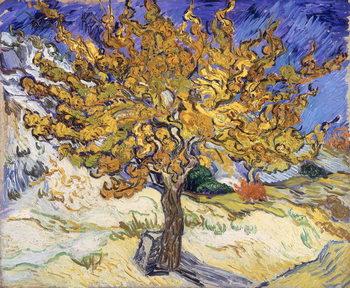 Reprodução do quadro Mulberry Tree, 1889