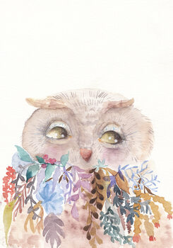 Ilustração Owl
