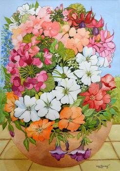 Reprodução do quadro Petunias, Geraniums and Fuchsias in a Terrace Pot, 2005,