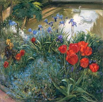 Reprodução do quadro Red Tulips and Geese