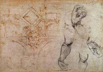 Reprodução do quadro Scheme for the Sistine Chapel Ceiling, c.1508