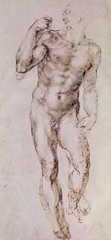 Reprodução do quadro Sketch of David with his Sling, 1503-4