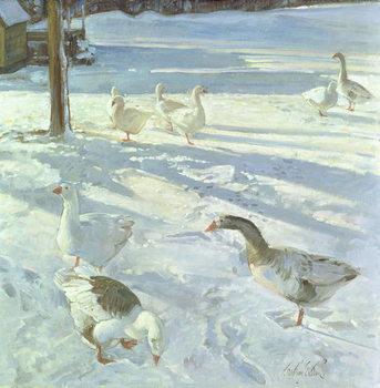 Reprodução do quadro Snowfeeders, 1999