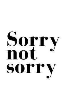 Ilustração sorry not sorry