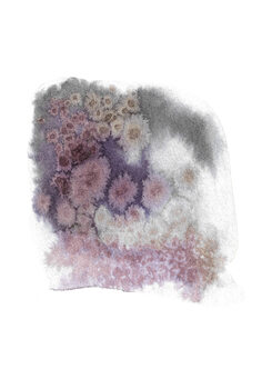 Ilustração Stardust 2