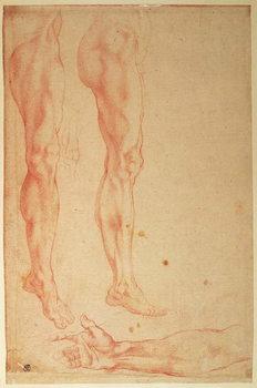 Reprodução do quadro Studies of Legs and Arms