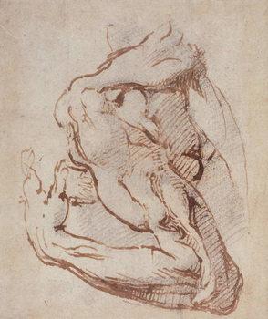 Reprodução do quadro Study of an Arm (ink) Inv.1859/5/14/819