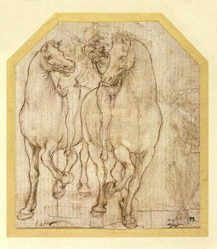 Reprodução do quadro Study of Horses and Riders, c.1480